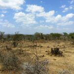 land-for-sale-in-mlolongo1