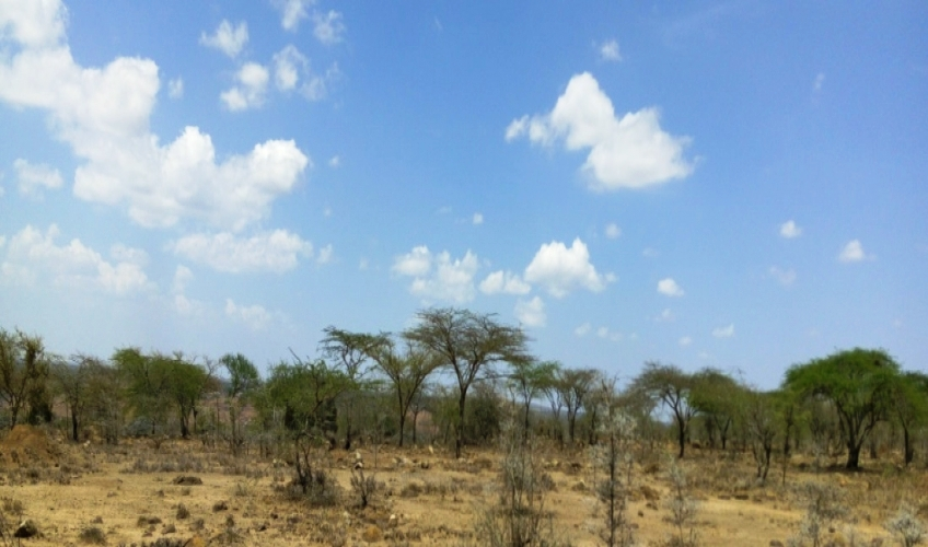 land-for-sale-in-mlolongo2