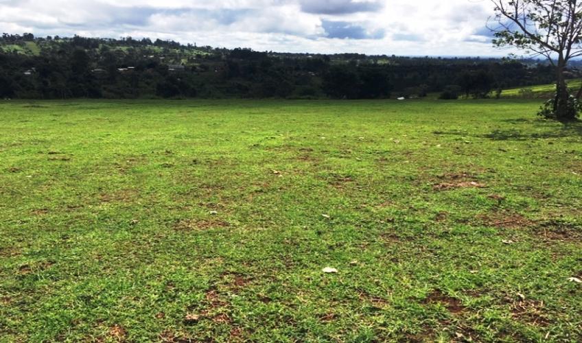 land-in-kiambu2
