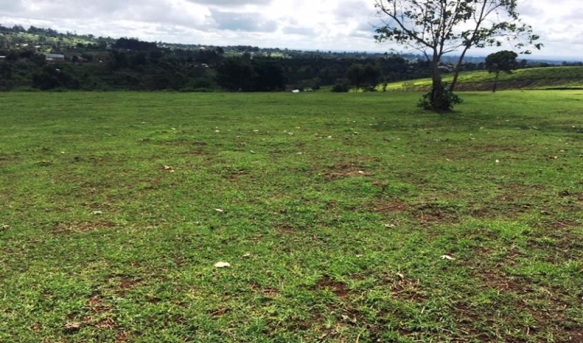 land-in-kiambu3