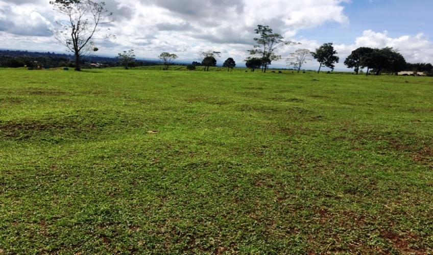 land-in-kiambu5