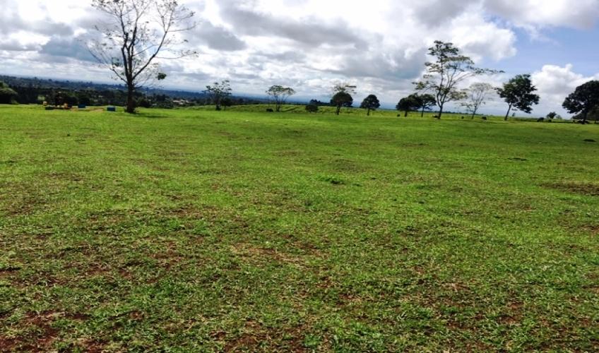 land-in-kiambu6