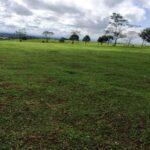 land-in-kiambu7