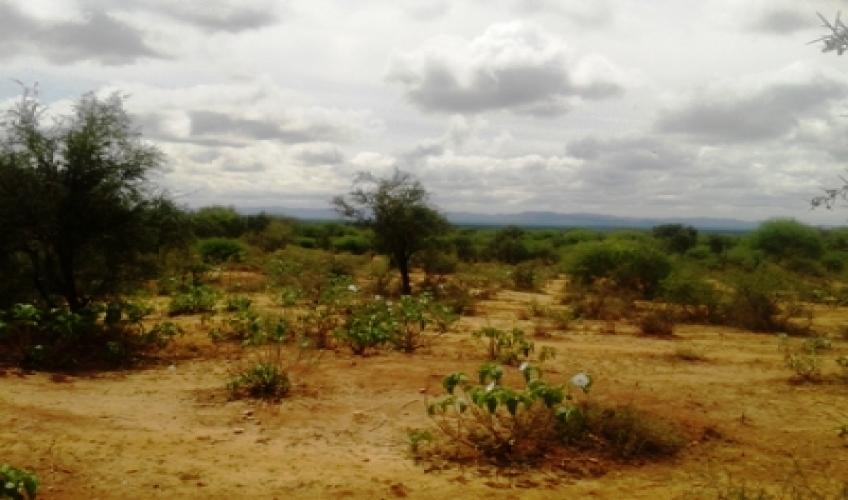 land-in-namanga