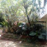 2-bedroom-townhouse-for-rent-kileleshwa03