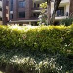 4 bedroom apartment for rent in Lavington0116