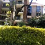 4 bedroom apartment for rent in Lavington0119