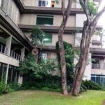 4-bedroom-apartment-for-rent-parklands08