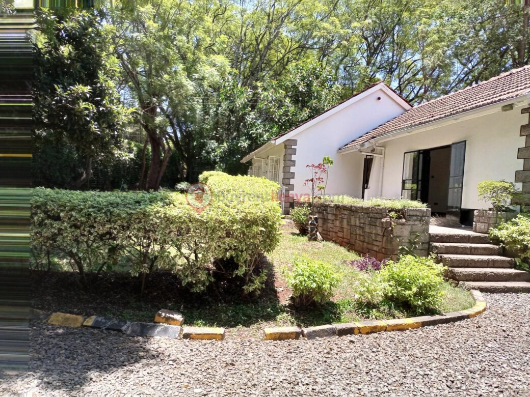 commercial-property-for-rent-lavington07